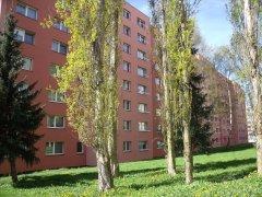 Prodej bytu 2+1 v České Lípě