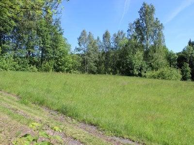 Prodej, Pozemky pro bydlení, 3894m² - Desná II