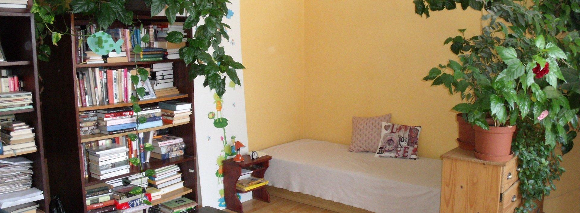 Prodej hezkého, útulného bytu 1+1 v Liberci, ul. Haškova, Ev.č.: N48218