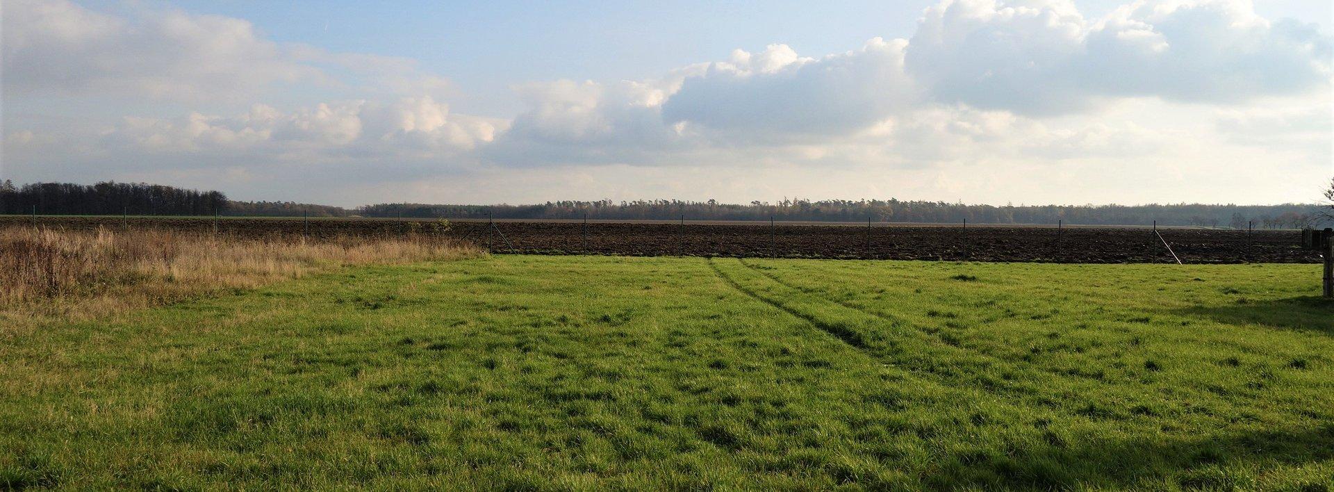Pozemek na okraji obce Pravy, 1494 m2, Ev.č.: N48273