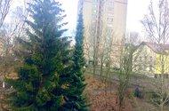 N48346_výhled z obývacího pokoje