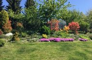 N48556_zahrada_