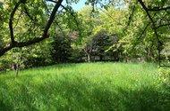 N48759_horní zahrada