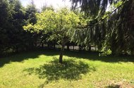 N48759_zahrada
