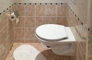 N48790_koupelna_WC