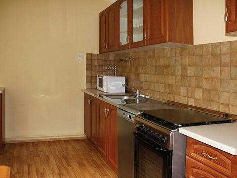 Pronájem slunného bytu 2+1, 55 m²