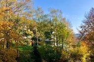 N48901_výhled z pokoje do zeleně.