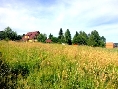 Prodej, Pozemky pro bydlení, 1651m² - Český Dub