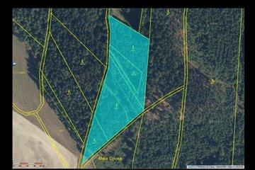 Prodej pozemku 8 969m² - Nové Město nad Metují - Vrchoviny