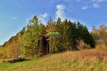 Prodej lesního pozemku 8 969m² - Nové Město nad Metují - Vrchoviny