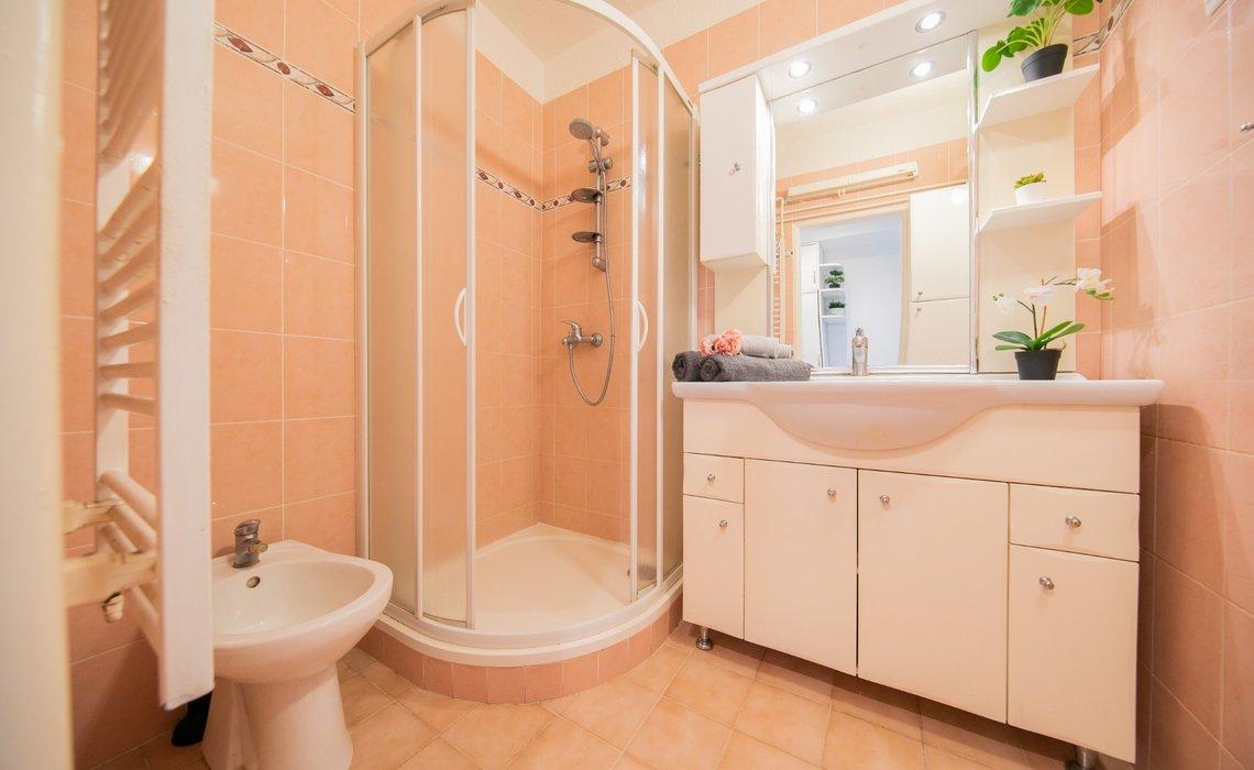 Koupelna se sprchovým koutem a bidetem