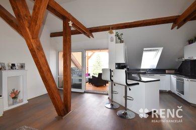 Prodej bytu 3+kk (4+kk) o celkové ploše 138 m2 + terasa 8 m2 s výhledem do zahrad domů v klidné části ulice Klecandova v Brně - Černých Polích., Ev.č.: 00793-1