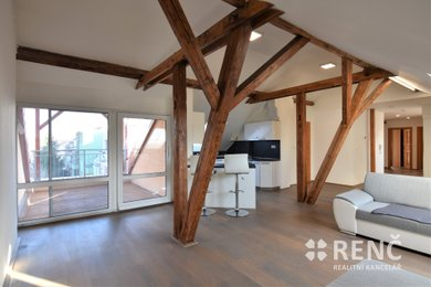 Prodej bytu 3+kk (4+kk) o celkové ploše 138 m2 + terasa 8 m2 s výhledem do zahrad v klidné části ulice Klecandova v Brně - Černých Polích., Ev.č.: 00793-1