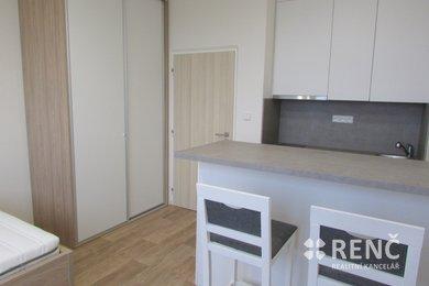 Pronájem moderně vybaveného bytu 1+kk Lesná, Halasovo náměstí, Ev.č.: 00339-1