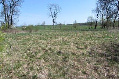 Prodej, Pozemky pro bydlení, 4538m² - Hroznětín - Bystřice, Ev.č.: 00810