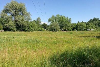 Prodej, Pozemky - zahrady, 1677m² - Jestřebí, Ev.č.: 01007