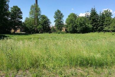 Prodej, Pozemky pro bydlení, 2500m² - Cvikov, Ev.č.: 01014