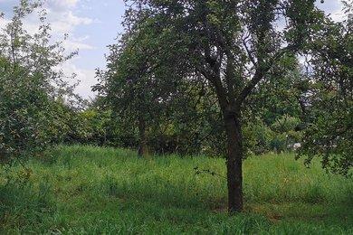 Prodej, Pozemky - zahrady, 816m² - Cvikov, Ev.č.: 01029
