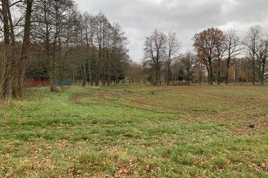 Prodej, Ostatní pozemky, 1732m² - Milíkov, Ev.č.: 01254