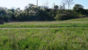 Prodej pozemku 6 722 m2 v Benátkách nad Jizerou
