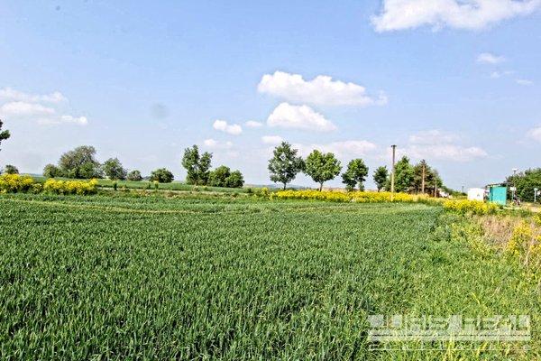 Prodej, dva pozemky pro komerční výstavbu, celkem 5732m² - Tuchoměřice