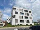 Prodej, investiční nebytový prostor, 32 m² - Brno - Sadová, Moskalykova, Ev.č.: 00176