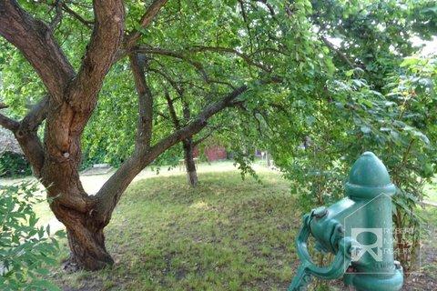 Pohled do zahrady od domu
