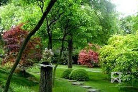 Botanická zahrada 1