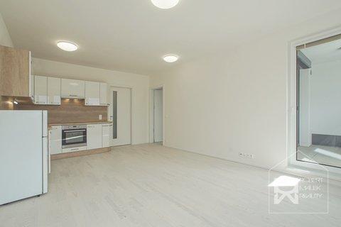 Obývací pokoj s kuchyňskou linkou se spotřebiči