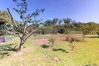 zadní zahrada_