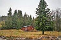 Prodej chaty 59 m² s pozemkem 1.942 m² - Deštné v Orlických horách