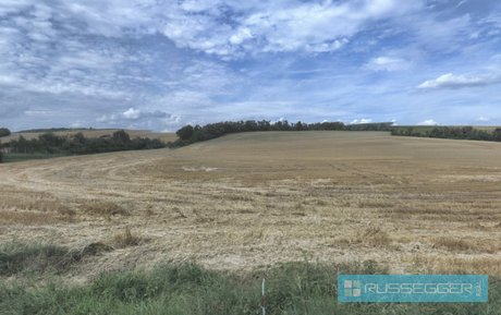 Prodej zemědělské půdy, 4.082 m² Mělčany u Ivančic, Ev.č.: 29518