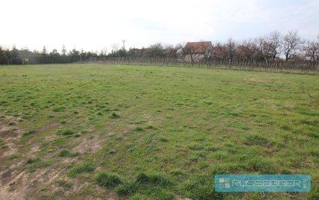 Prodej stavebního pozemku 1.010 m² v obci Syrovice, Ev.č.: 29527