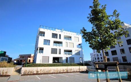Rent, Flats 3+KT, 71m² - Brno, Registration number: 29568