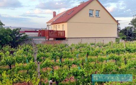 Prodej rodinného domu  330 m2, s krásným výhledem ve vinařské oblasti Pavlov, Ev.č.: 29607