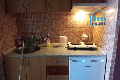 Pronájem bytu 1+kk, Karviná - Ráj, ul. Borovského, Ev.č.: 03268