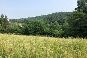Prodej pozemku v Plesné