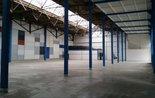 Dětenice -1 200 m2 -Nový,