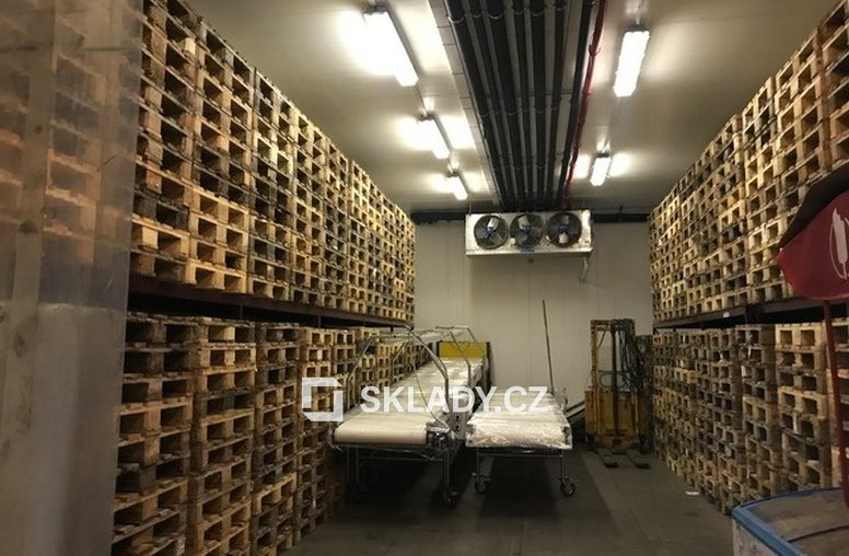 výrobně-skladové mrazírenské prostory (10)