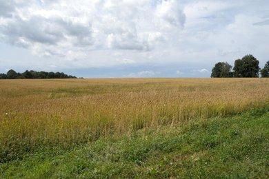 Prodej, Pozemky pro bydlení, 2600m² Proskovice, Světlovská, Ev.č.: 12017