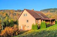Prodej, Rodinné domy, 320m² - Heřmanovice