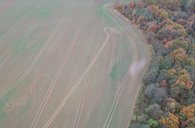 Prodej, Zemědělská půda, 79074m², Chotoviny