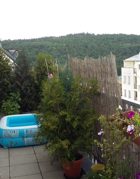 terasa-terrace (2)