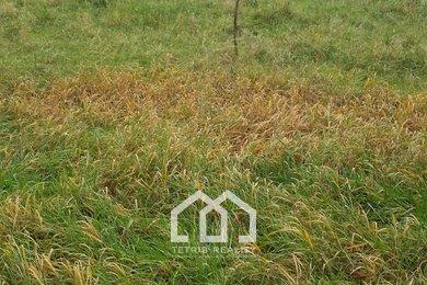 Prodej, Pozemky pro bydlení, 1137m² - Bohumín, Ev.č.: 00125