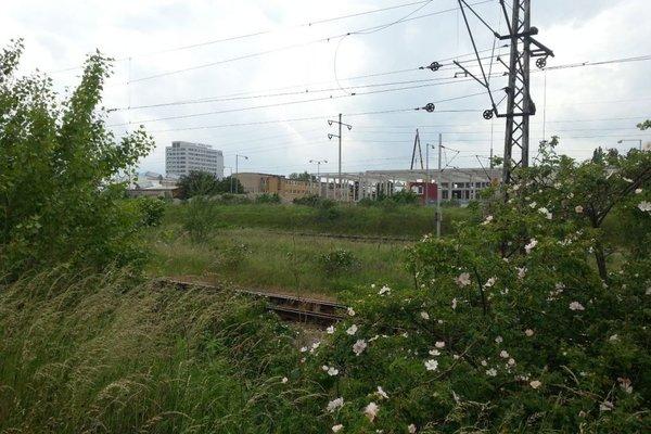 Prodej, Pozemky pro komerční výstavbu, 10182 m²