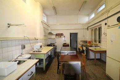 Prodej, dům k bydlení i podnikání, 1921m² - Nesovice
