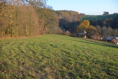 Prodej stavebního pozemku 8 495m² v malebné obci Slatinka u Letovic