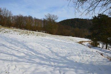Prodej stavebního pozemku 4085m² (465 Kč za m²) v malebné obci Slatinka u Letovic
