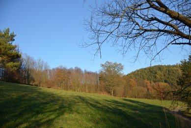 Prodej stavebního pozemku 8495m2  (365,-Kč za m2) v malebné obci Slatinka u Letovic