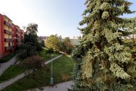 idlochovice - okolí Mš